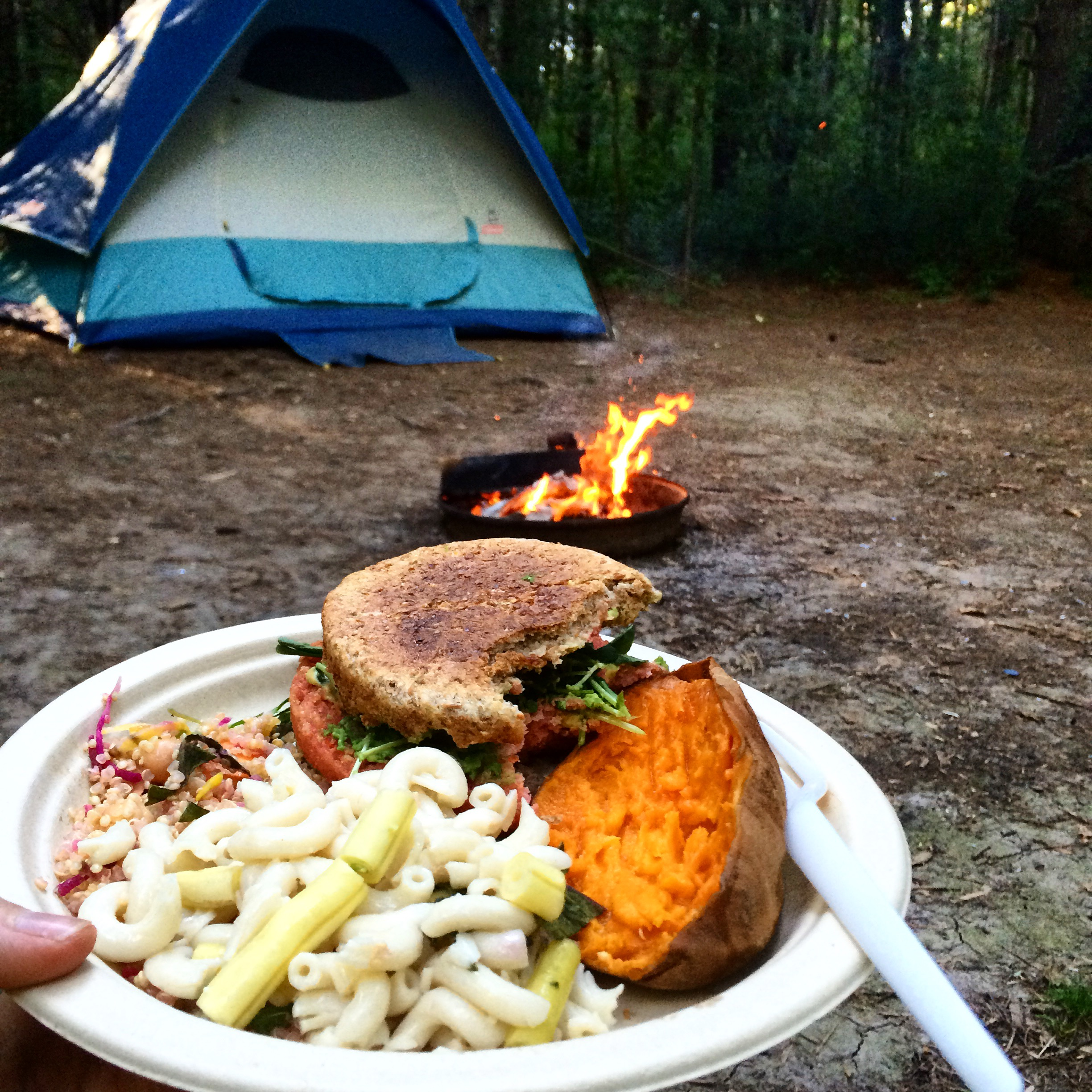 Camping And Healthy Food, Yes It Is Possible!